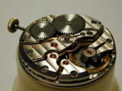 Rubis montres